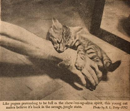 pm_1941_07_13bsm copy 2