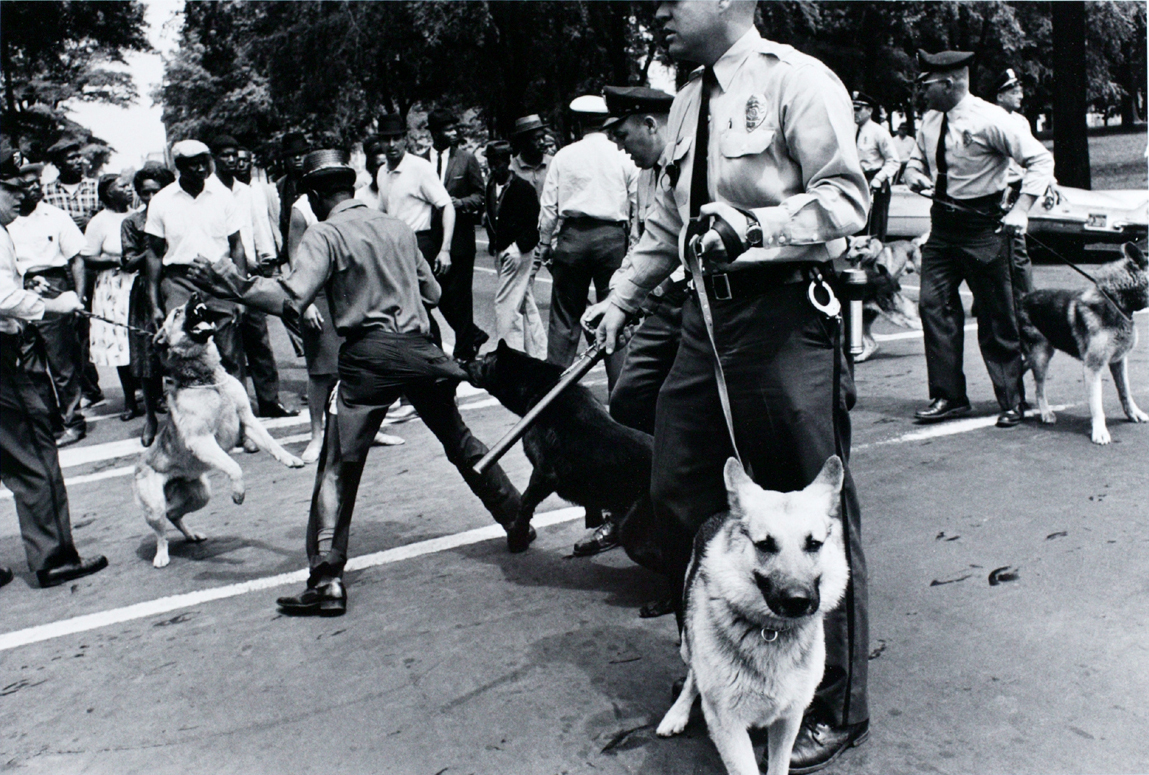 Pictures Of Civil Rights Alabama Hoses Dogs