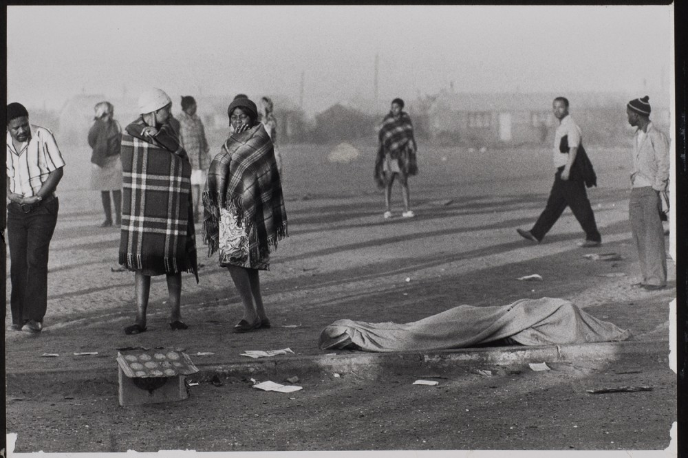 apartheid in africa essay