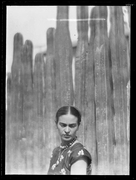 Martin Munkasci, Glass plate negatives